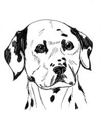 download dalmatian dog coloring page or print dalmatian dog