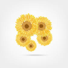 sunflowers sketch for your design stock vector image 35939675