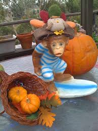 thanksgiving surf surf monkey fellowship