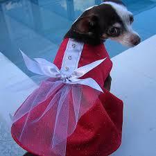 puppy party dress diy