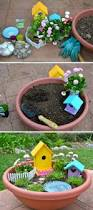 Mini Fairy Garden Ideas by 8215 Best Fairy Garden Images On Pinterest Fairies Garden Gnome