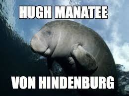 Manatee Meme - meme creator hugh manatee von hindenburg meme generator at