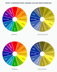 Blue Yellow Color Blind Understanding Color Blindness A Guide To Accessible Design Crux