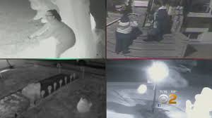 Premier Christmas Laser Light Projector by Thief Returns Stolen Christmas Decorations After Seeing Facebook
