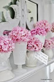 hydrangeas flowers make your hydrangeas bloom a how to