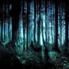 Forest Backdrop 22 Best Haunted Forest Backdrops Images On Pinterest Landscapes