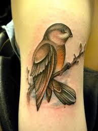 bird on a branch tattoo by amanda leadman tattoomagz