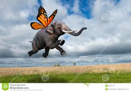 surreal monarch butterfly wings elephant stock illustration