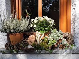 Esszimmer Herbstlich Dekorieren Herbstdeko Auf Der Fensterbank Bilder Und Fotos Garten