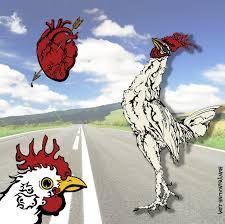 chicken song my little hum