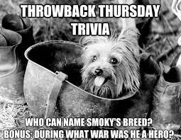 Throwback Thursday Meme - throwback thursday trivia akc dog lovers american kennel club