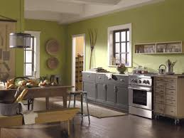 Kitchen Color Designs Best Color For Kitchen Home Design Ideas And Architecture With