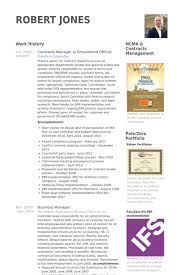 Cto Sample Resume by Official Resume Samples Visualcv Resume Samples Database