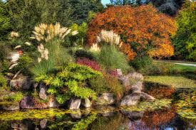 pictures vancouver canada vandusen botanical garden nature pond