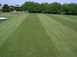 gang mower for football u0026 cricket pictches pitchcare forum