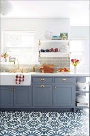 Should I Paint My Kitchen Cabinets White Kitchen How To Redo Cabinets Diy Cabinet Refinishing What Color