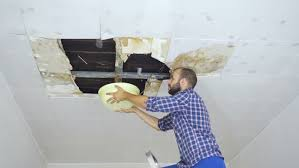 Removing Mold From Ceiling by Man Cleaning Mold On Ceiling Ceiling Panels Damaged Huge Hole In