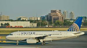 Luggage United Airlines United Airlines Apologizes After Dog Dies In An Overhead Bin Daily