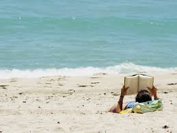 native plants grow on the sand dunes at this beach stock photo 11 great seaside novels u2013 electric literature