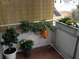 windschutz balkon plexiglas paravent sichtschutz f r balkon garten balkon design ideen