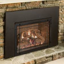 Fireplace With Blower by Direct Vent Fireplaces Direct Vent Stoves And Inserts Monessen