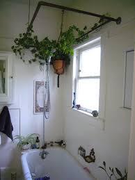 Pure Home Decor Awesome Creeped Bathroom Plants Decor On Circle Iron On Large