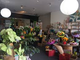 florist in glen eden west auckland gifts and home decor