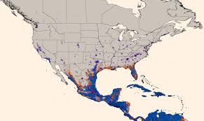Map Of University Of Florida by New Map Predicts Spread Of Zika Virus Medicine Sci News Com
