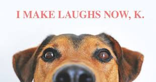 Dogs Memes - 10 memes that get life with dogs oh so right