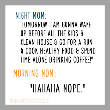 Mommy Memes - hilarious facebook parenting memes of the week perfection pending