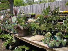 Breezewood Gardens Chagrin Falls - building upon an old plant category strategies blog from