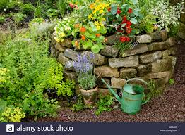herb garden with stone wall stock photo royalty free image
