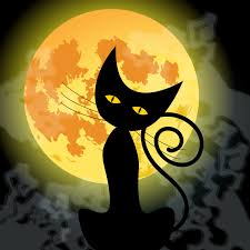cat halloween background images scary halloween wallpapers desktop pictures u0026 backgrounds