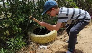 to turn a schoolyard into turning asphalt haredi schoolyards into mini farms israel21c