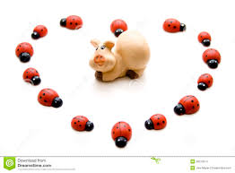luck pig with ladybug stock images image 26013314