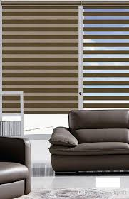 Rica Blinds 2017 Customized Size Double Layer Translucent Roller Zebra Blinds