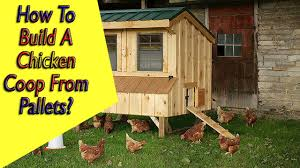 how to build a simple chicken coop out of pallets with easy