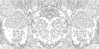 coloring book enchanted forest an inky quest coloring book
