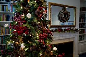 50 festive facts about christmas