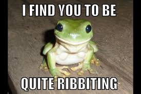 Frog Memes - frog meme pulls out all the stops to get the girl