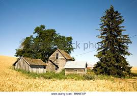 old ranch house in wheat field stock photos u0026 old ranch house in