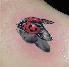 flying ladybug design design of tattoosdesign of tattoos