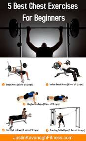 95 best chest day images on pinterest chest workouts chest