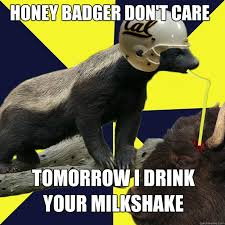 Meme Honey Badger - badger dont care meme