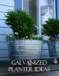 Galvanized Trough Planter by Galvanized Planters Everything From A Trough To Grandmas U0027s