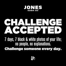 Jones Thanksgiving Soda Jones Soda Home Facebook
