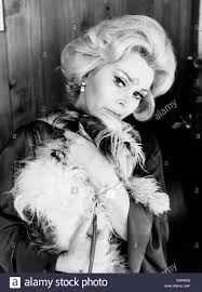 Zsa Zsa Gabor Estate Portrait Of Actress Zsa Zsa Gabor With Her Dog Stock Photo