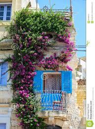 Beautiful Balcony Beautiful Maltese Balcony Entwined With Bougainvillea On Birgu