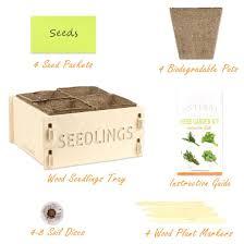 amazon com enterra supply herb garden seed starter kit u0026 wood