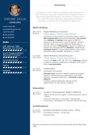 digital marketing resume digital marketing consultant resume sles visualcv resume